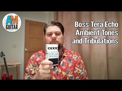 Boss Tera Echo Pedal Demo 1
