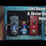 iSet Reverb & Distortion Pedals