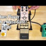 Using a Noise Gate with a Built in FX Loop